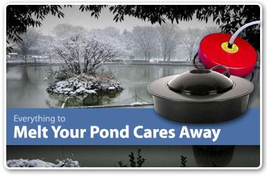 seasonal pond specials