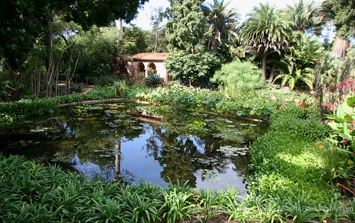 Water Garden Planning And Ideas 171 Pond Supply Blog
